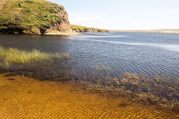 Abbots Lagoon_.jpg