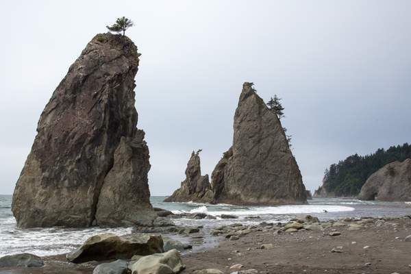 Rialto Beach Near La Push11.jpg
