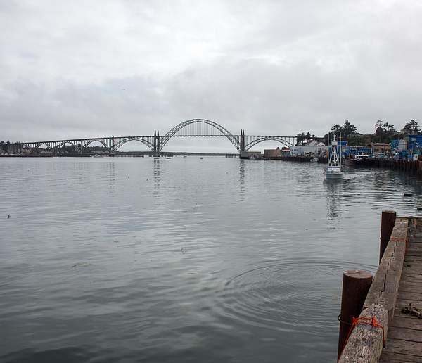 Newport Bridge from Afar.jpg