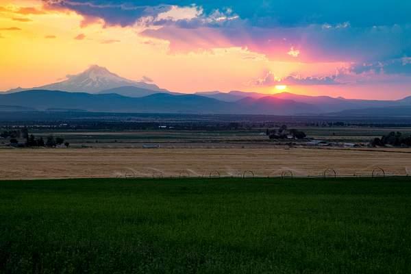 Mt Washington from Redmond Hwy 97.jpg