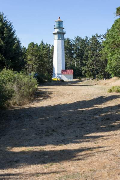 Lighthouse in the woods.jpg