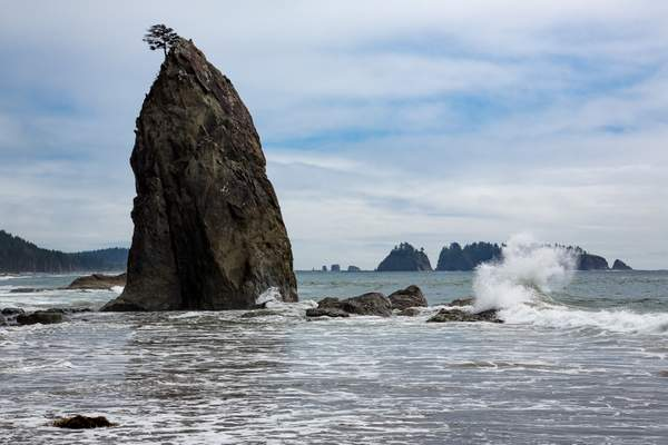 Rialto Beach Near La Push20.jpg