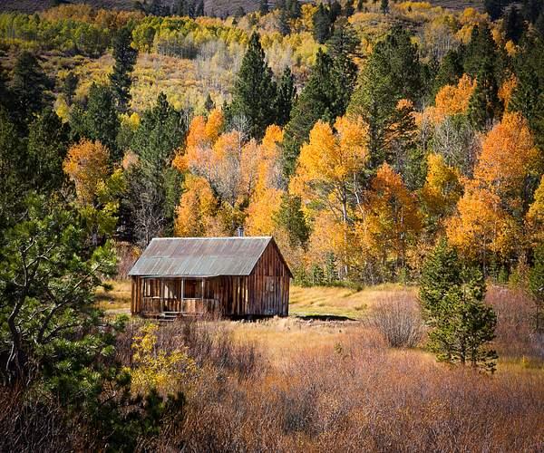 Carson Pass Cabin in Fall.jpg