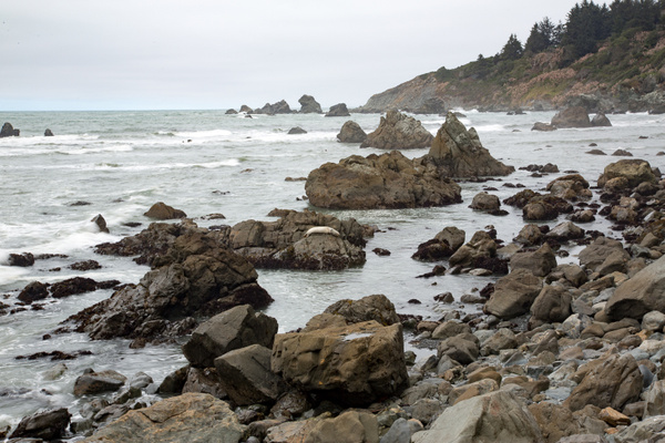 Patrick's Point State Park 9 by Harrison Clark