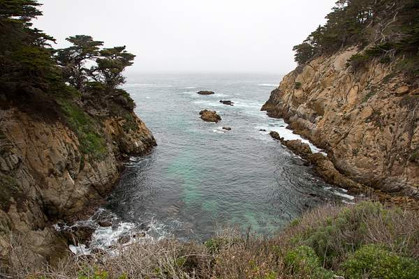 Point Lobos-20