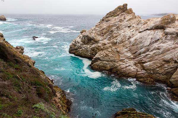 Point Lobos-12
