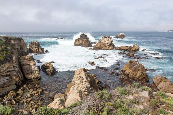 Point Lobos-2