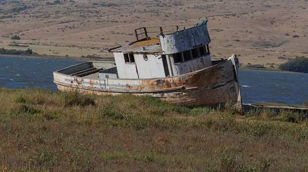 Point Reyes June 2010-41.jpg