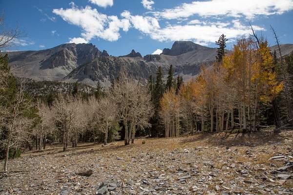 Great Basin NP-10