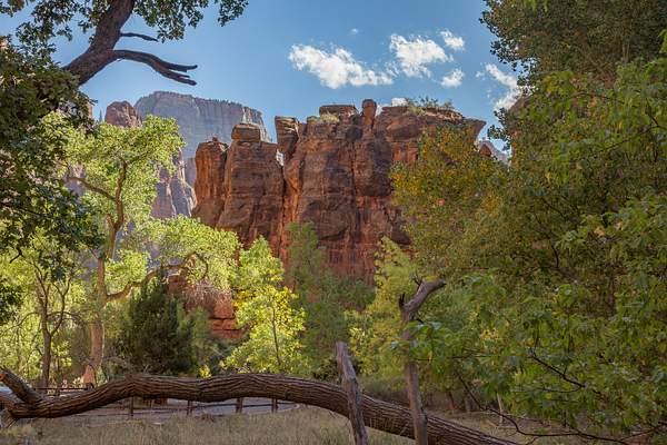 Zion Canyon-16
