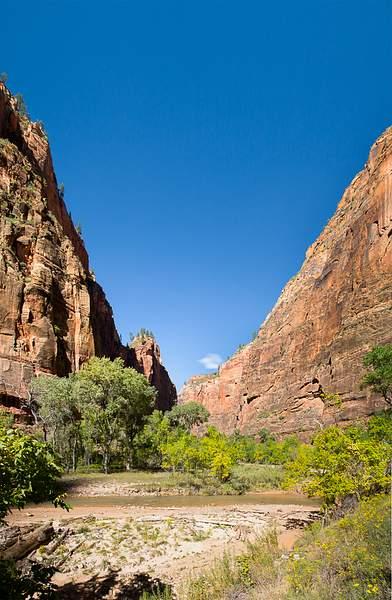 Zion Canyon-13.jpg