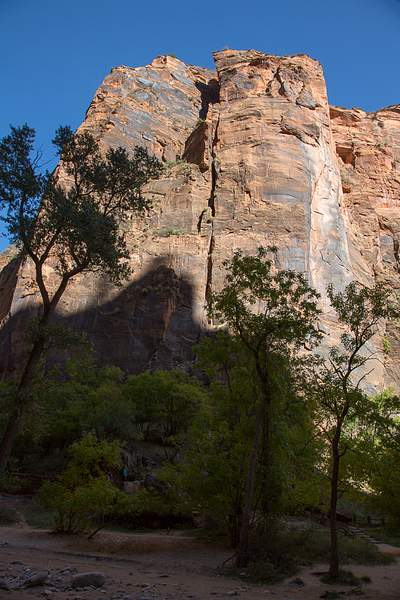 Zion Canyon-9.jpg