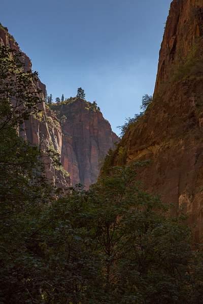 Zion Canyon-7