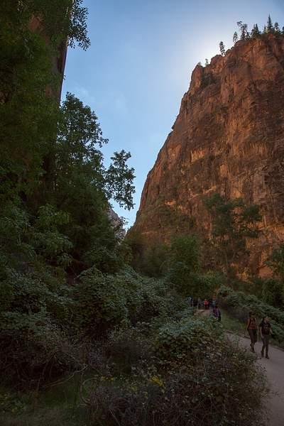 Zion Canyon-6