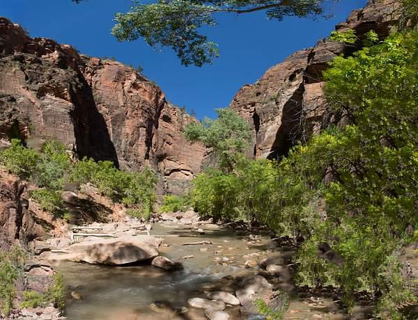 Zion Canyon-5