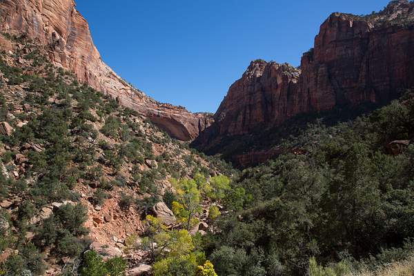 Zion Canyon-1