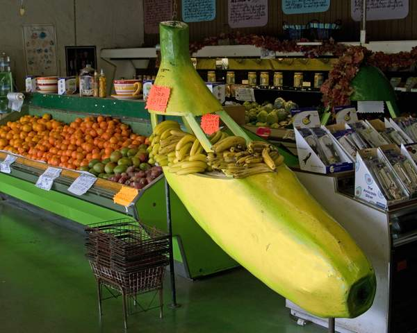 Giant Banana at the Giant Artichoke Fruit Stand in Castroville, California