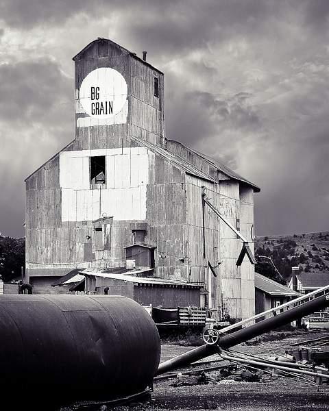 Big Grain