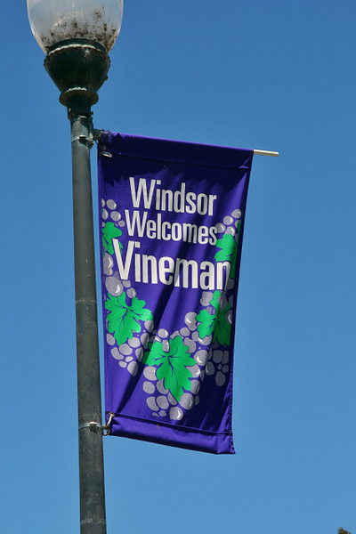 Vineman by Hyperlitehunny