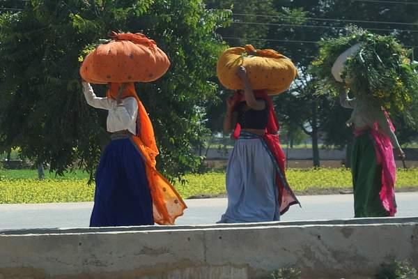 Women working, India