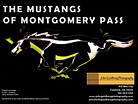 The Mustangs of Montgomery Pass