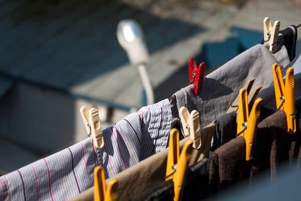 morning, sun, clothespins )