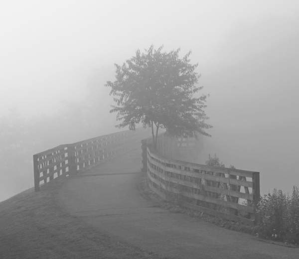 BRIDGE IN THE MIST