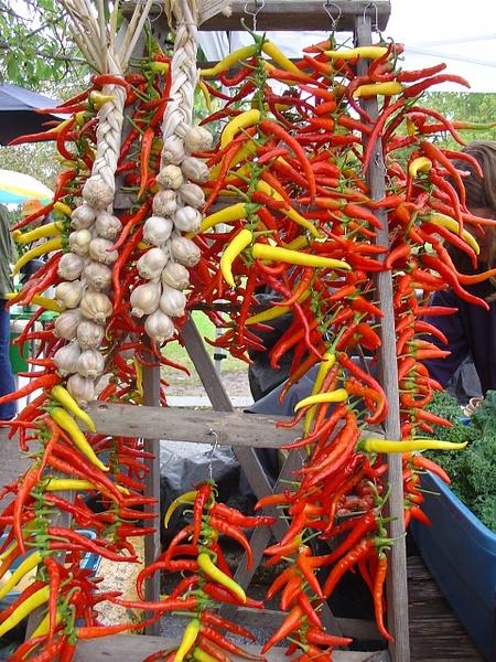 Saturday Market 2007 by brigitteatthemarket