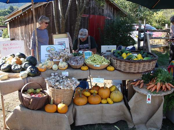 Farmer's Market Salt Spring 2008